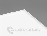 Ecophon Hygiene Performance Ds 600x600x20mm White 500